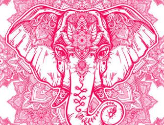 Mentaltraining: Denken Sie bitte jetzt nicht an einen rosa Elefanten!